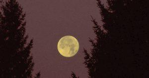 Kuu maisemassa